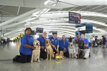 Guide Dogs at Heathrow