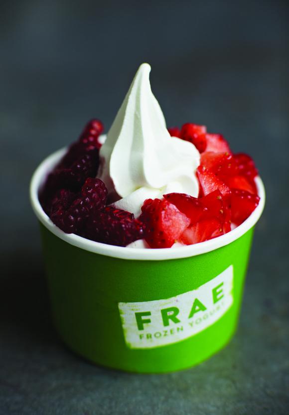 FRAE Frozen Yoghurt Pop up, T5